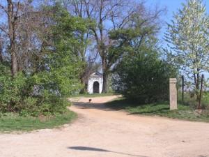 2009-04-19